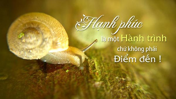 hoc-chung-khoan-hanh-phuc2